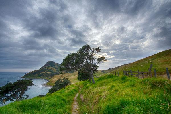 Séjours Au pair en Nouvelle-Zélande