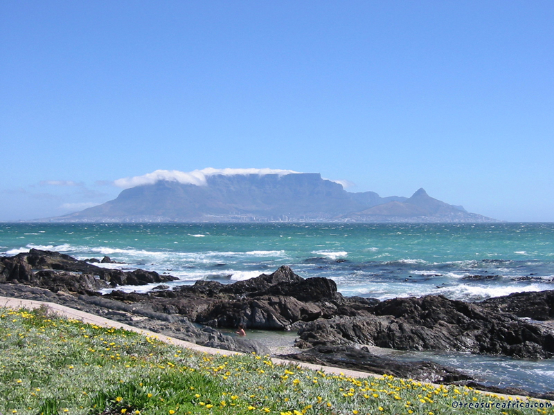 Summer, Table Mountain, Capetown
