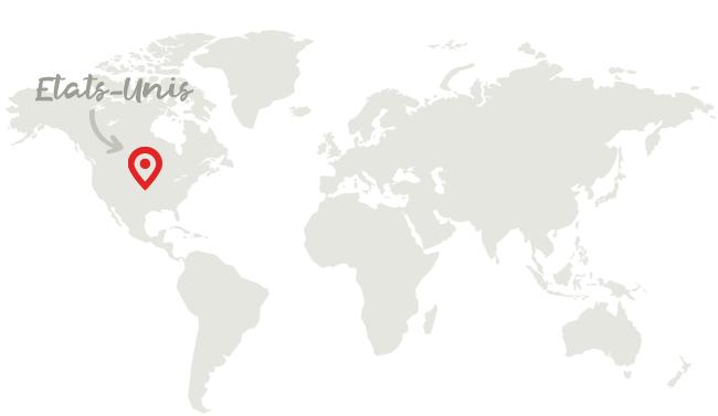 Pays - Visa J-1